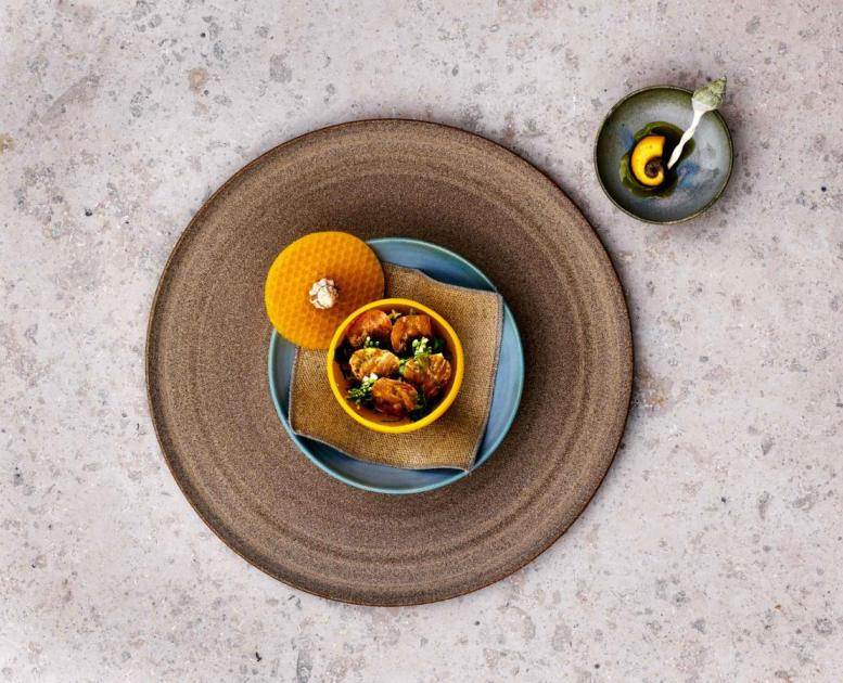 noma is a world-renowned michelin-starred resaturant in Copenhagen